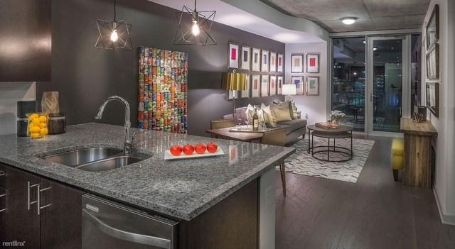 1 Bedroom, Downtown Houston Rental in Houston for $1,610 - Photo 1