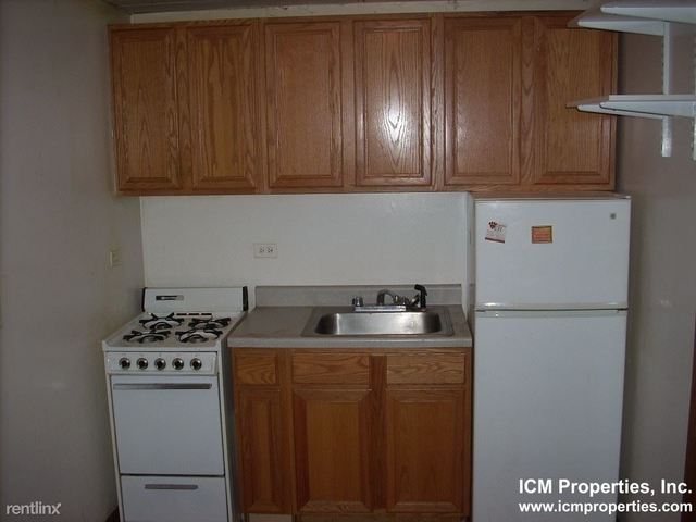 1 Bedroom, Park West Rental in Chicago, IL for $1,175 - Photo 1