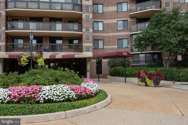 2 Bedrooms, The Rotonda Rental in Washington, DC for $2,250 - Photo 1
