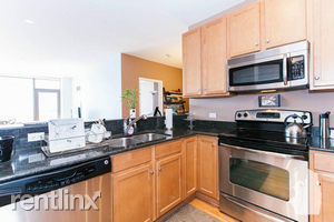 2 Bedrooms, South Loop Rental in Chicago, IL for $3,250 - Photo 1