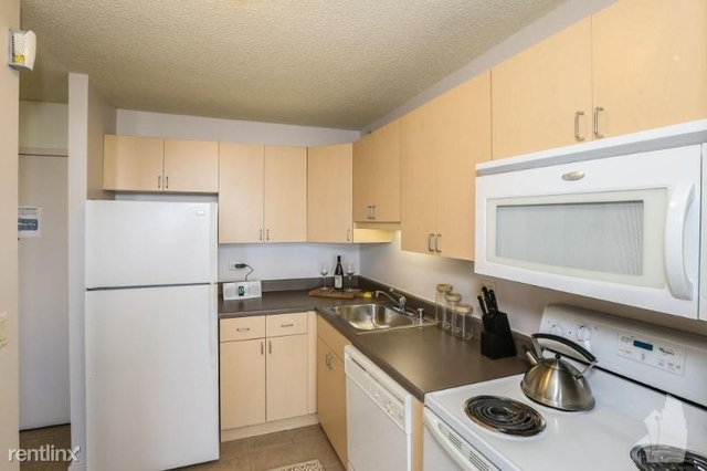 2 Bedrooms, South Loop Rental in Chicago, IL for $2,576 - Photo 1