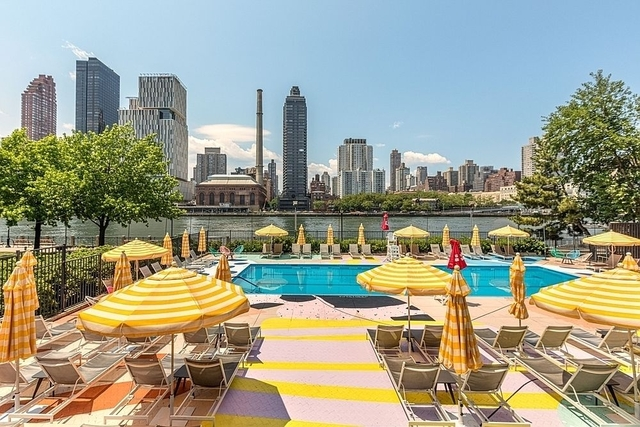 2 Bedrooms, Roosevelt Island Rental in NYC for $3,000 - Photo 1