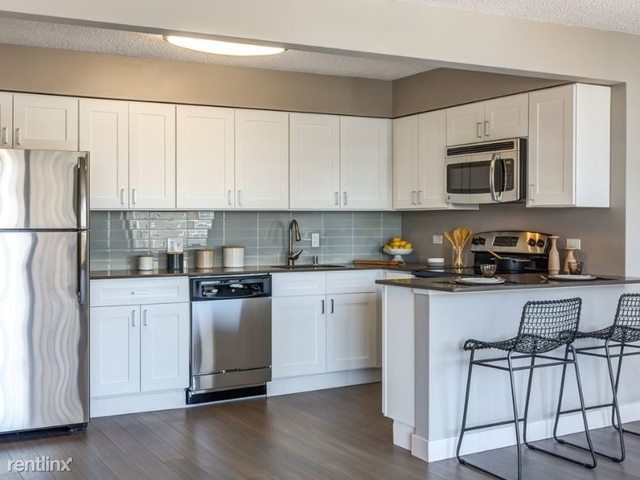 2 Bedrooms, Park West Rental in Chicago, IL for $2,986 - Photo 1