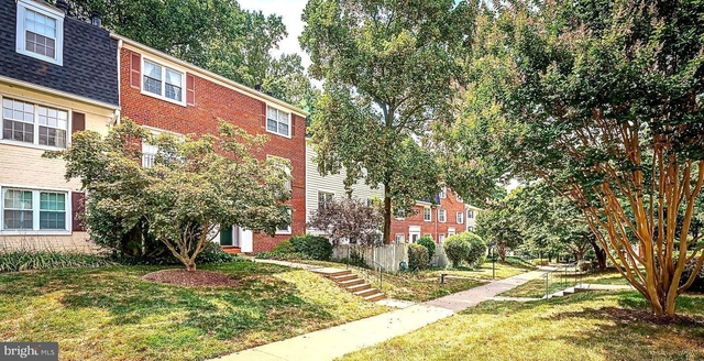 2 Bedrooms, Fairlington - Shirlington Rental in Washington, DC for $2,000 - Photo 1