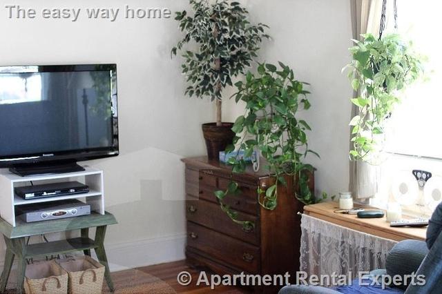 1 Bedroom, Edgeworth Rental in Boston, MA for $1,500 - Photo 1