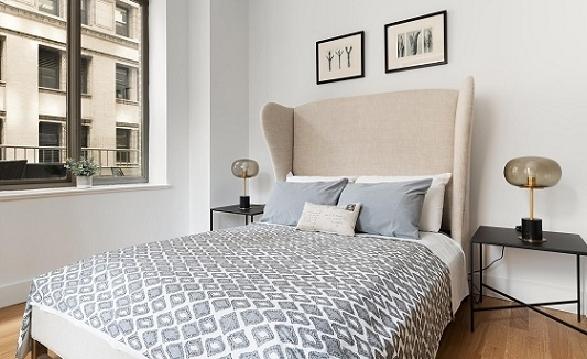 2 Bedrooms, Financial District Rental in NYC for $4,885 - Photo 1