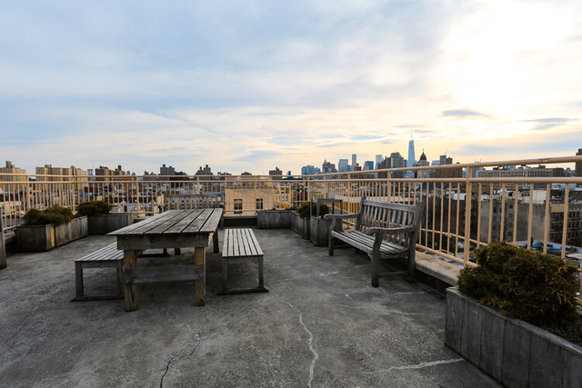 3 Bedrooms, Alphabet City Rental in NYC for $4,600 - Photo 1