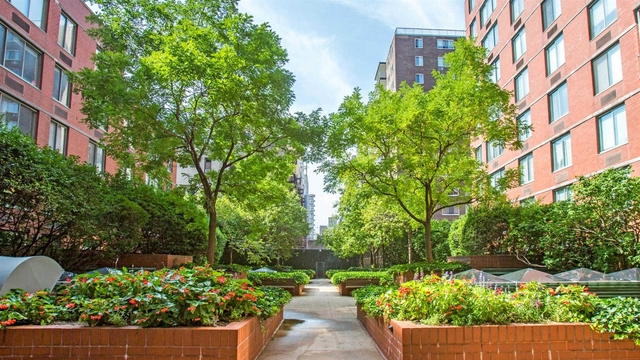 2 Bedrooms, Manhattan Valley Rental in NYC for $5,801 - Photo 1