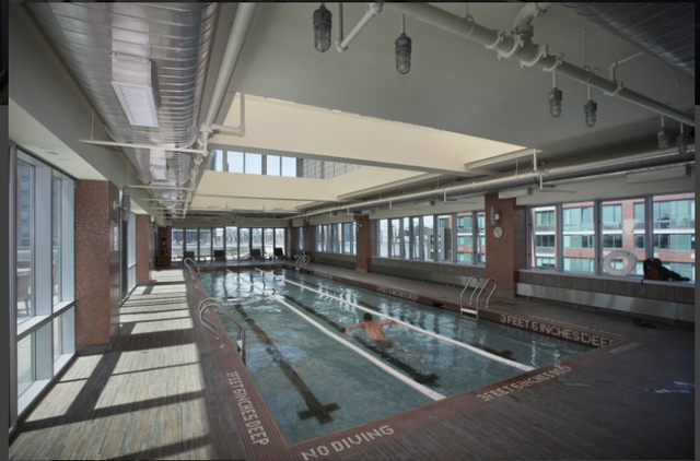 1 Bedroom, Hunters Point Rental in NYC for $3,650 - Photo 1