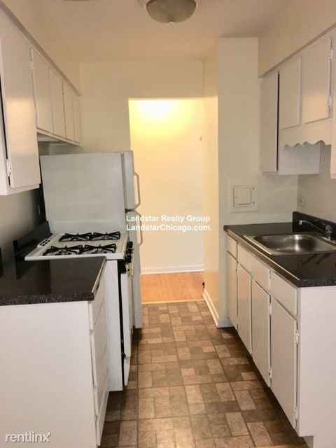 1 Bedroom, Lake View East Rental in Chicago, IL for $1,315 - Photo 1