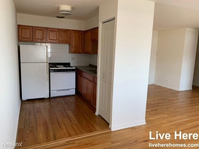 1 Bedroom, Lake View East Rental in Chicago, IL for $1,190 - Photo 1