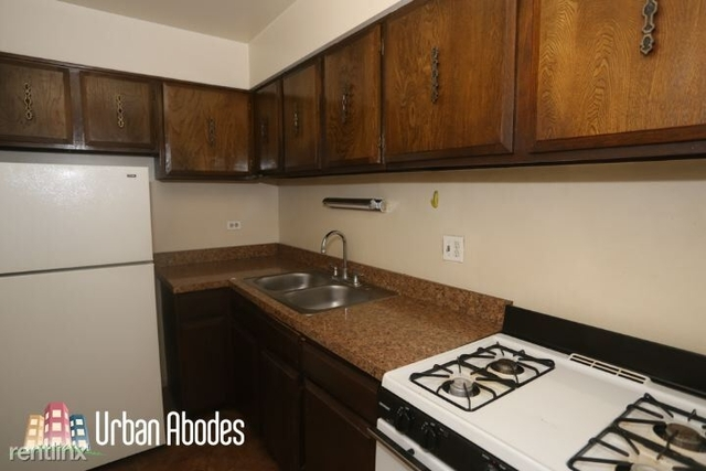 1 Bedroom, Lake View East Rental in Chicago, IL for $1,395 - Photo 1