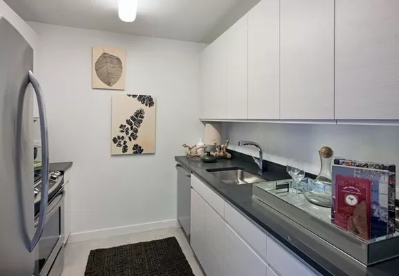 1 Bedroom, Hunters Point Rental in NYC for $3,201 - Photo 1