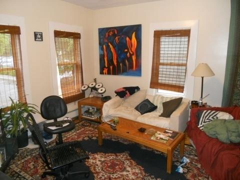 4 Bedrooms, Brookline Village Rental in Boston, MA for $2,900 - Photo 1