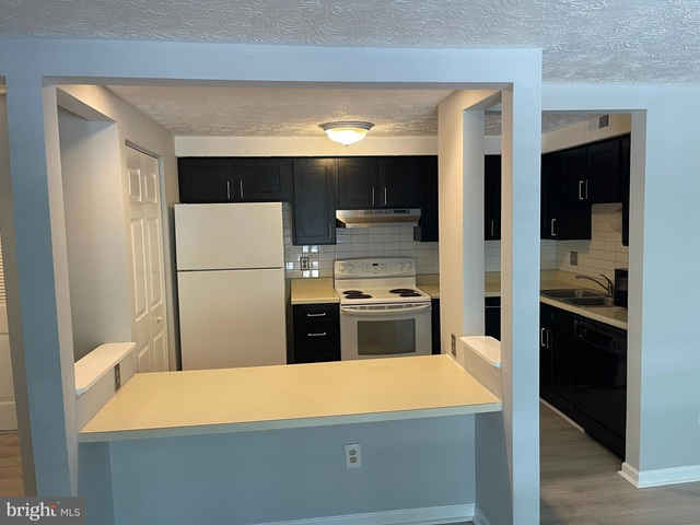 2 Bedrooms, Mount Vernon Rental in Washington, DC for $1,650 - Photo 1