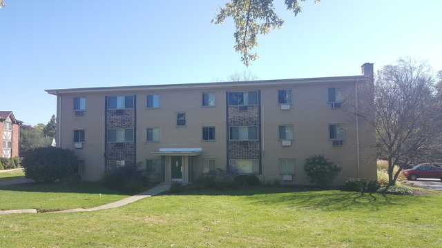 1 Bedroom, Dundee Rental in Chicago, IL for $1,200 - Photo 1