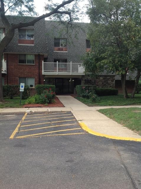 1 Bedroom, Elk Grove Rental in Chicago, IL for $1,125 - Photo 1