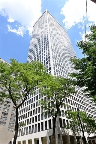 2 Bedrooms, Gold Coast Rental in Chicago, IL for $3,400 - Photo 1