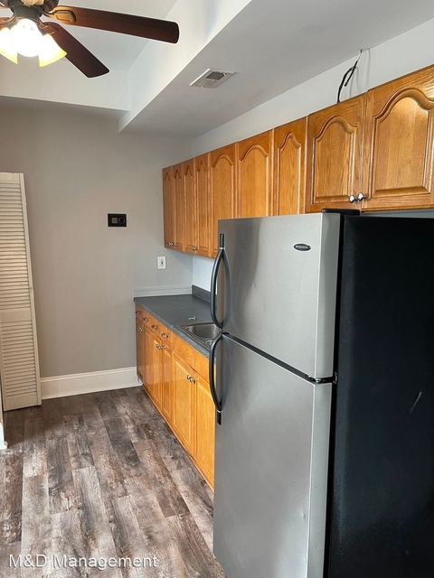 1 Bedroom, Heart of Chicago Rental in Chicago, IL for $1,250 - Photo 1