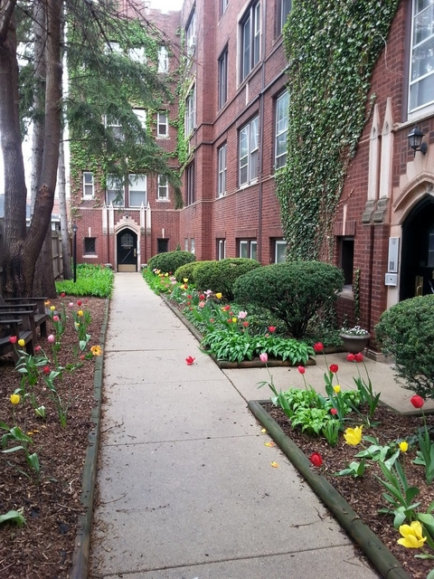 1 Bedroom, Edgewater Rental in Chicago, IL for $1,200 - Photo 1