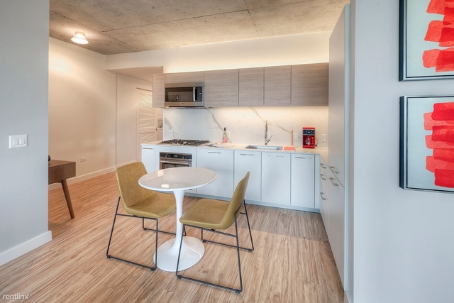 1 Bedroom, West Loop Rental in Chicago, IL for $3,000 - Photo 1