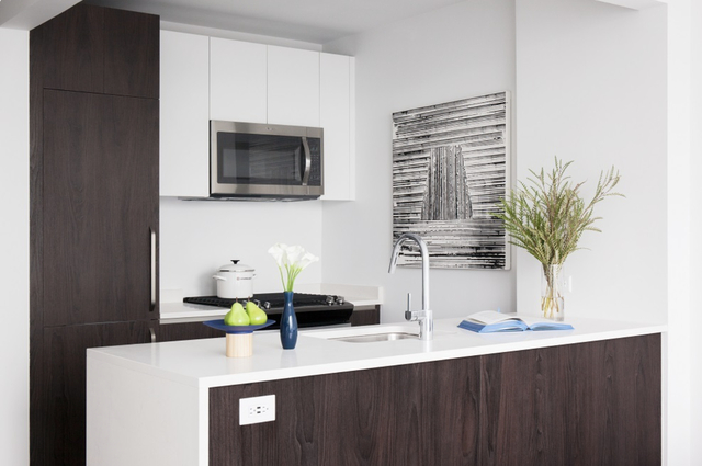 2 Bedrooms, Long Island City Rental in NYC for $5,338 - Photo 1