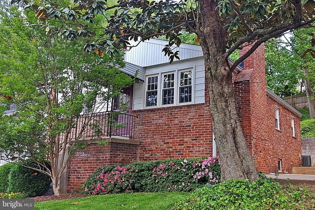 3 Bedrooms, Cherrydale Rental in Washington, DC for $3,400 - Photo 1