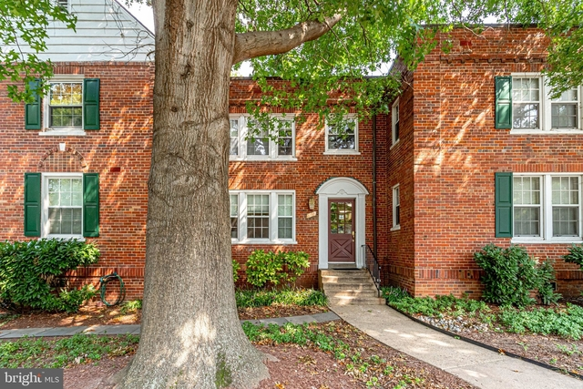 1 Bedroom, Colonial Village Rental in Washington, DC for $1,700 - Photo 1