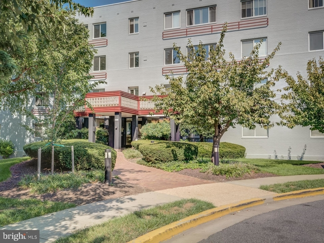 1 Bedroom, Alcova Heights Rental in Washington, DC for $1,599 - Photo 1