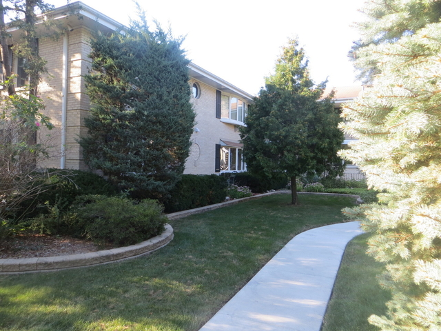 2 Bedrooms, Elk Grove Rental in Chicago, IL for $1,500 - Photo 1