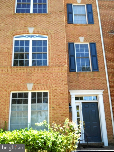 3 Bedrooms, Belmont Center South Rental in Washington, DC for $2,650 - Photo 1