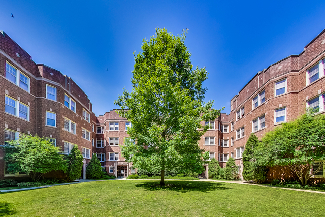 1 Bedroom, Oak Park Rental in Chicago, IL for $1,725 - Photo 1