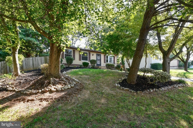3 Bedrooms, Rollingwood Village Rental in Washington, DC for $2,150 - Photo 1
