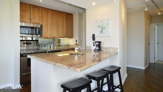 2 Bedrooms, Near North Side Rental in Chicago, IL for $2,900 - Photo 1