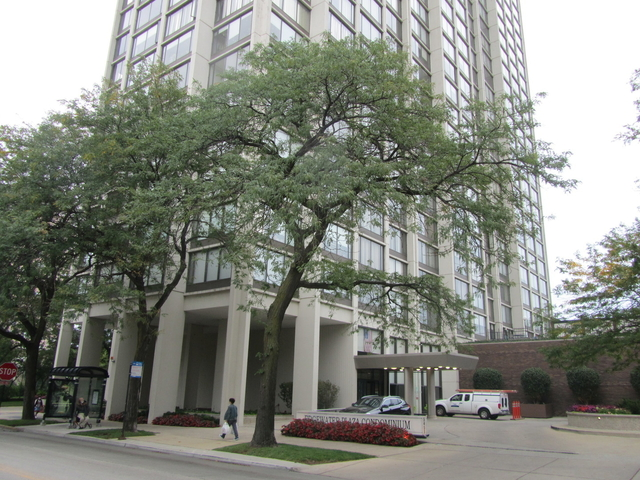 1 Bedroom, Edgewater Beach Rental in Chicago, IL for $1,600 - Photo 1
