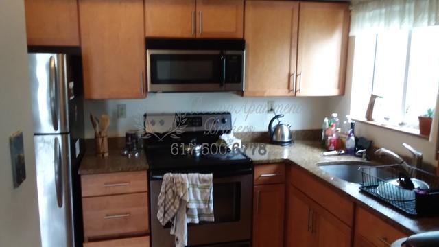 2 Bedrooms, Riverside Rental in Boston, MA for $3,200 - Photo 1