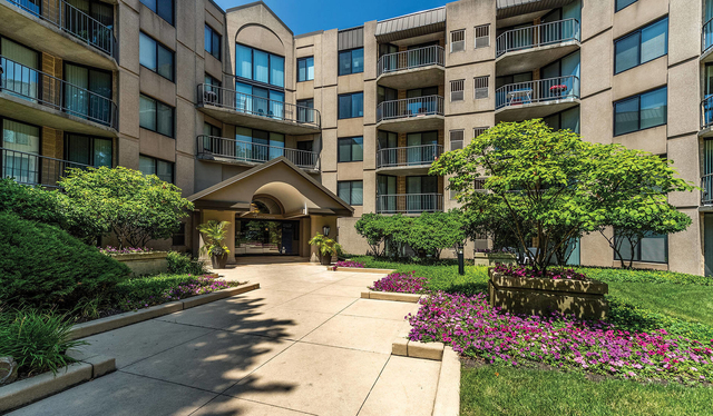 1 Bedroom, York Rental in Chicago, IL for $1,745 - Photo 1