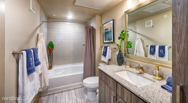 1 Bedroom, Les Lacs Village Rental in Dallas for $1,000 - Photo 1