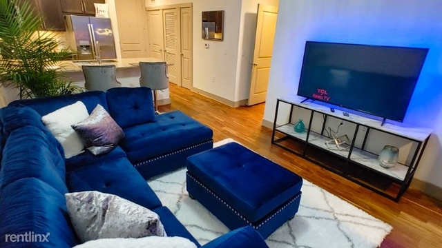 1 Bedroom, Downtown Houston Rental in Houston for $2,695 - Photo 1