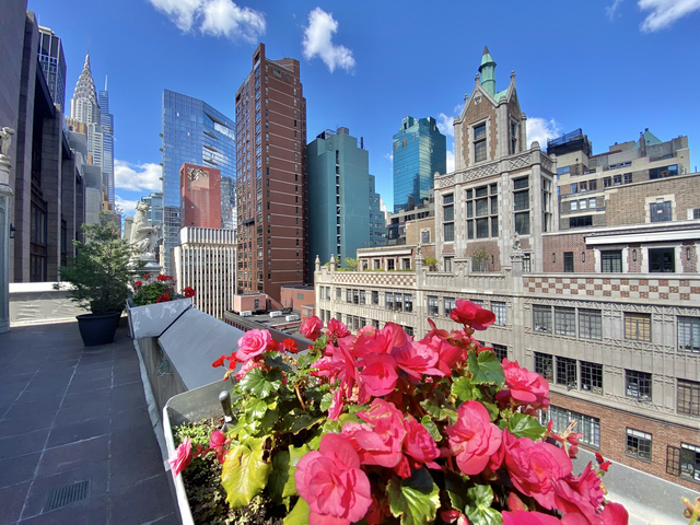 1 Bedroom, Tudor City Rental in NYC for $4,495 - Photo 1