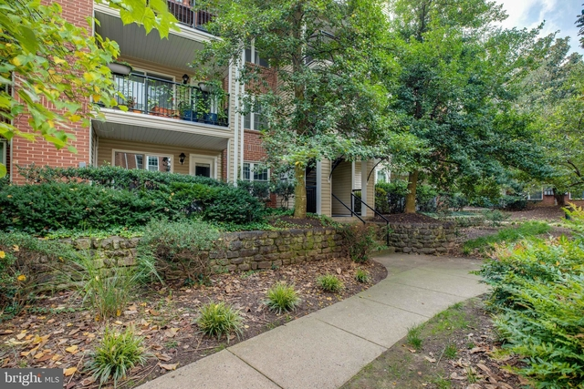 1 Bedroom, Pointe at Park Center Condominiums Rental in Washington, DC for $1,650 - Photo 1