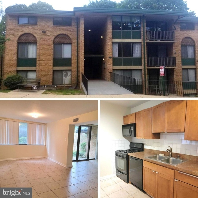 1 Bedroom, Saxony Square Condominiums Rental in Washington, DC for $1,500 - Photo 1
