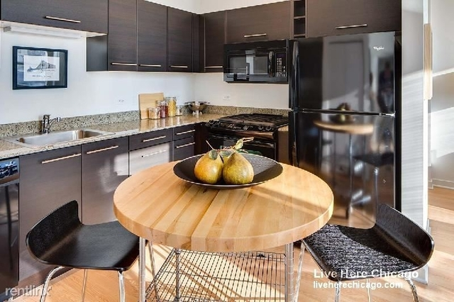 2 Bedrooms, Goose Island Rental in Chicago, IL for $2,736 - Photo 1
