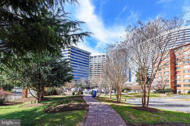 1 Bedroom, Radnor - Fort Myer Heights Rental in Washington, DC for $1,550 - Photo 1