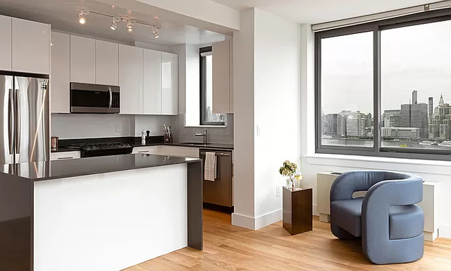 Studio, Hunters Point Rental in NYC for $2,735 - Photo 1