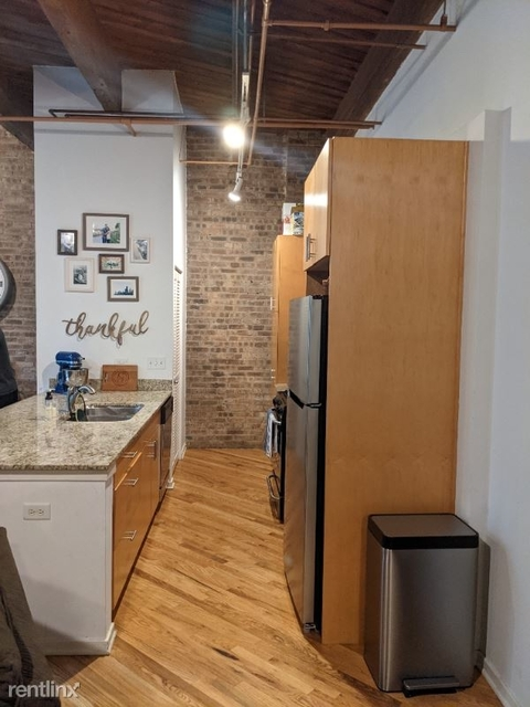 2 Bedrooms, Near West Side Rental in Chicago, IL for $2,450 - Photo 1