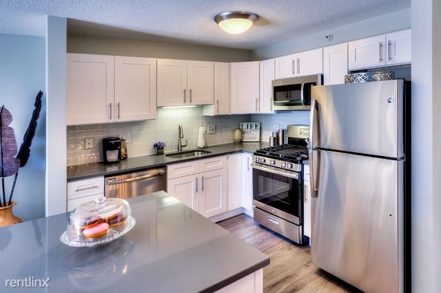 1 Bedroom, Near North Side Rental in Chicago, IL for $2,015 - Photo 1
