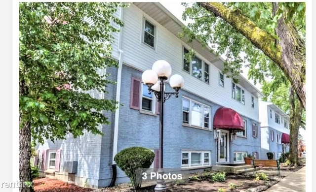 2 Bedrooms, Schiller Park Rental in Chicago, IL for $1,250 - Photo 1