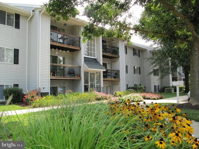 2 Bedrooms, Bel Air North Rental in Baltimore, MD for $1,599 - Photo 1