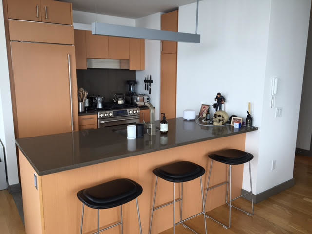 Studio, Civic Center Rental in NYC for $2,995 - Photo 2